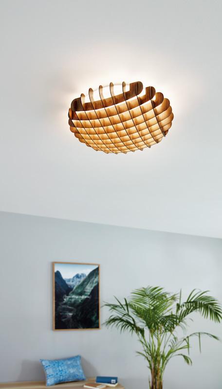 Світильник настінно-стельовий VALDECABRAS EGLO 98429 - Фото №32